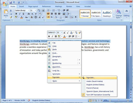 Screenshot showing context menus in Microsoft Word 2007
